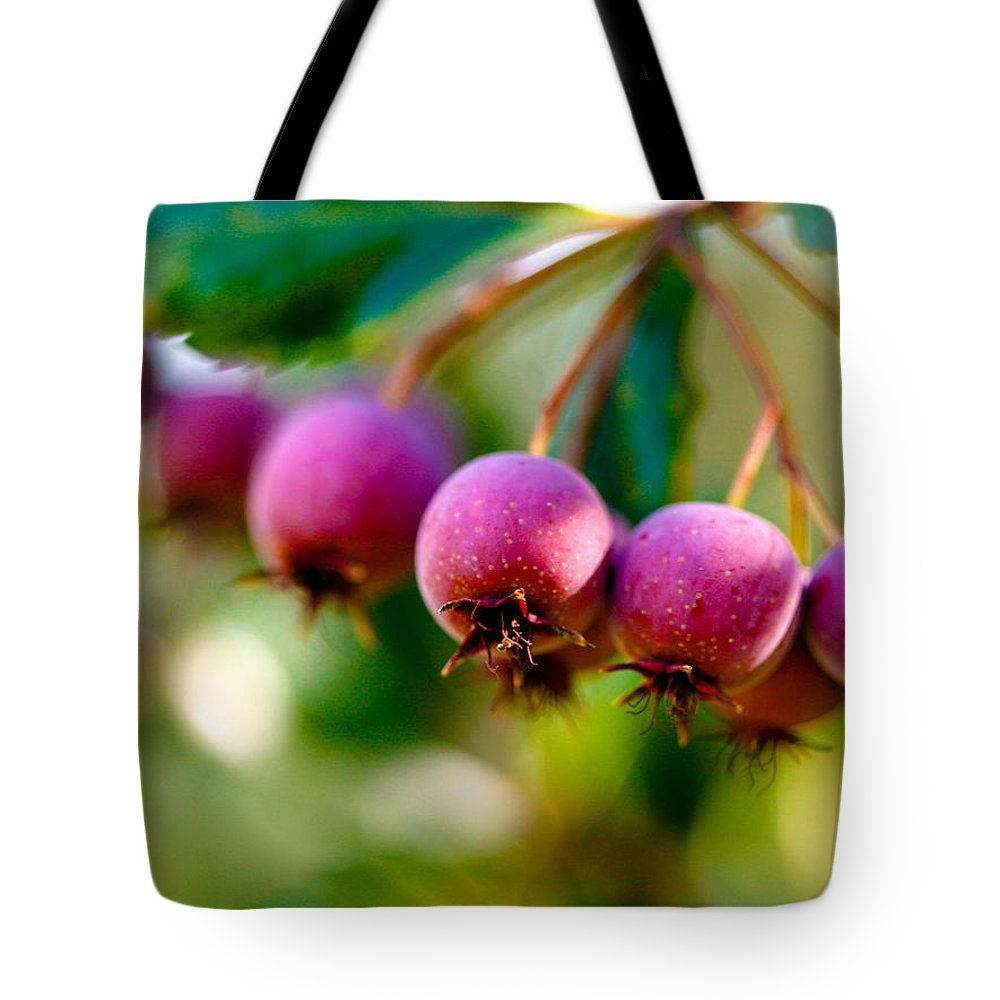 Berry Tote Bag featuring the photograph Fall Berries by Marilyn Hunt