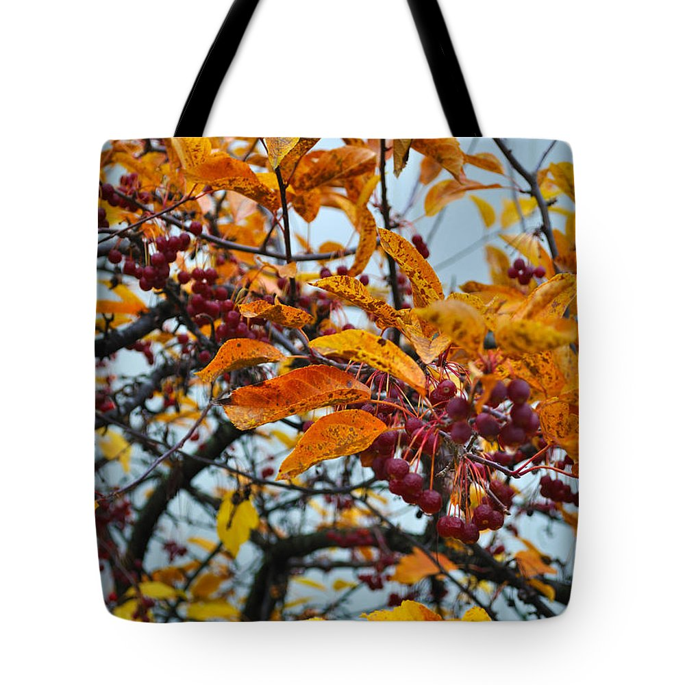 Berries Tote Bag featuring the photograph Fall Berries by Tim Nyberg