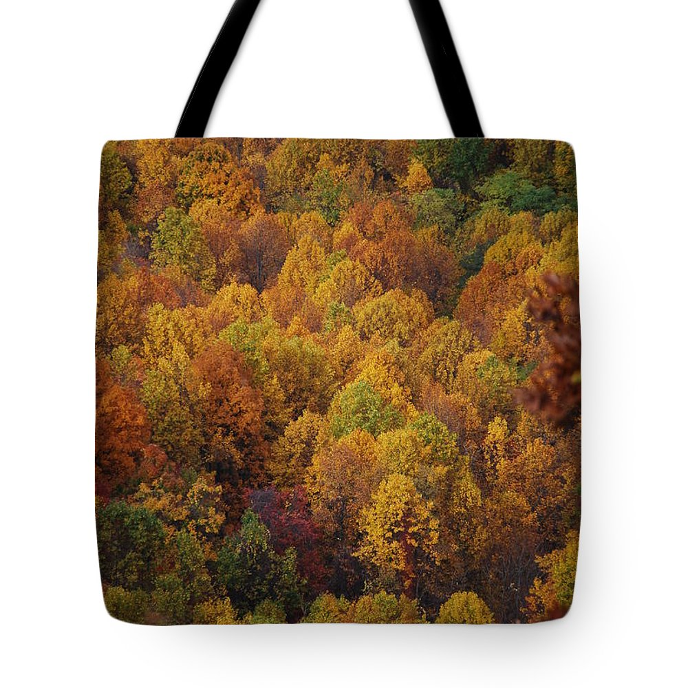 Fall Tote Bag featuring the photograph Fall Cluster by Eric Liller