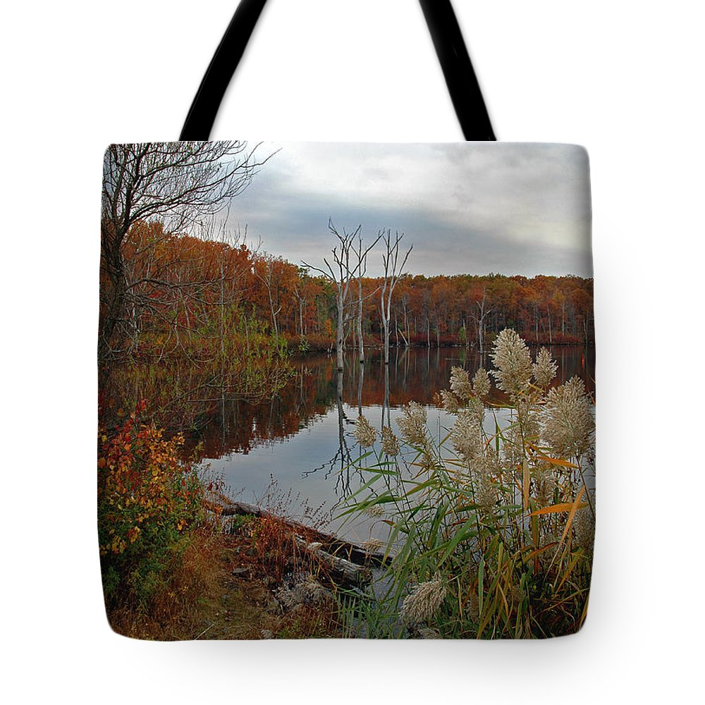 Bradley Tote Bag featuring the photograph Fall Colors At The Reservoir by Rich Despins