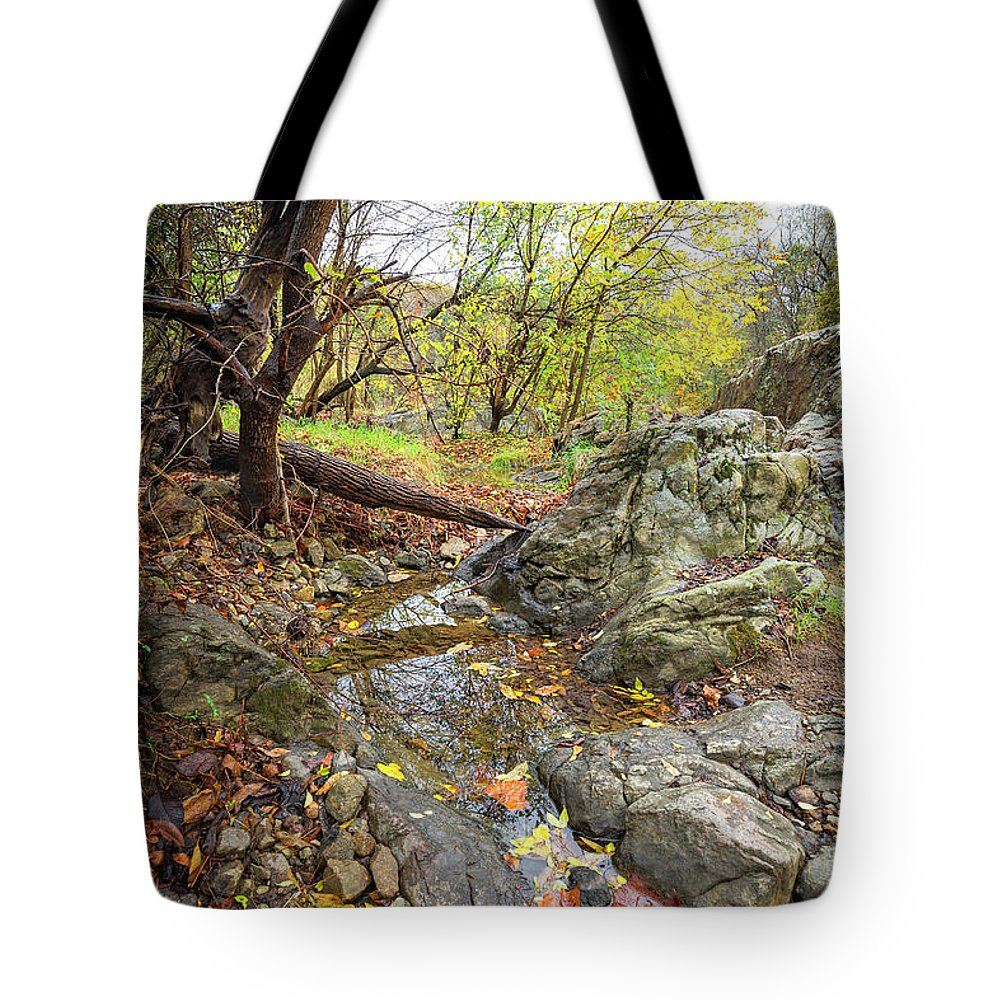Fall Tote Bag featuring the photograph Fall Creek View by Alan Raasch