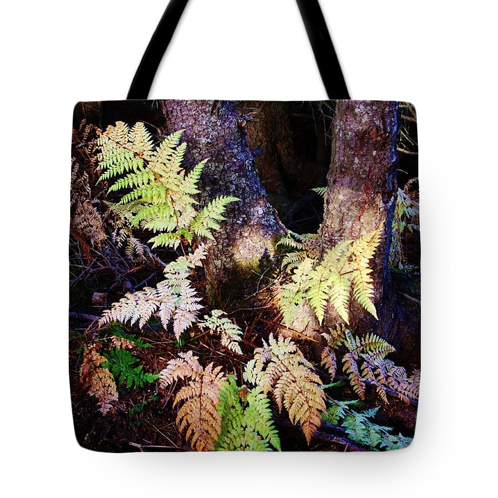 Alaskan Ferns In Autumn Tote Bag featuring the photograph Fall Ferns by Lori Mahaffey