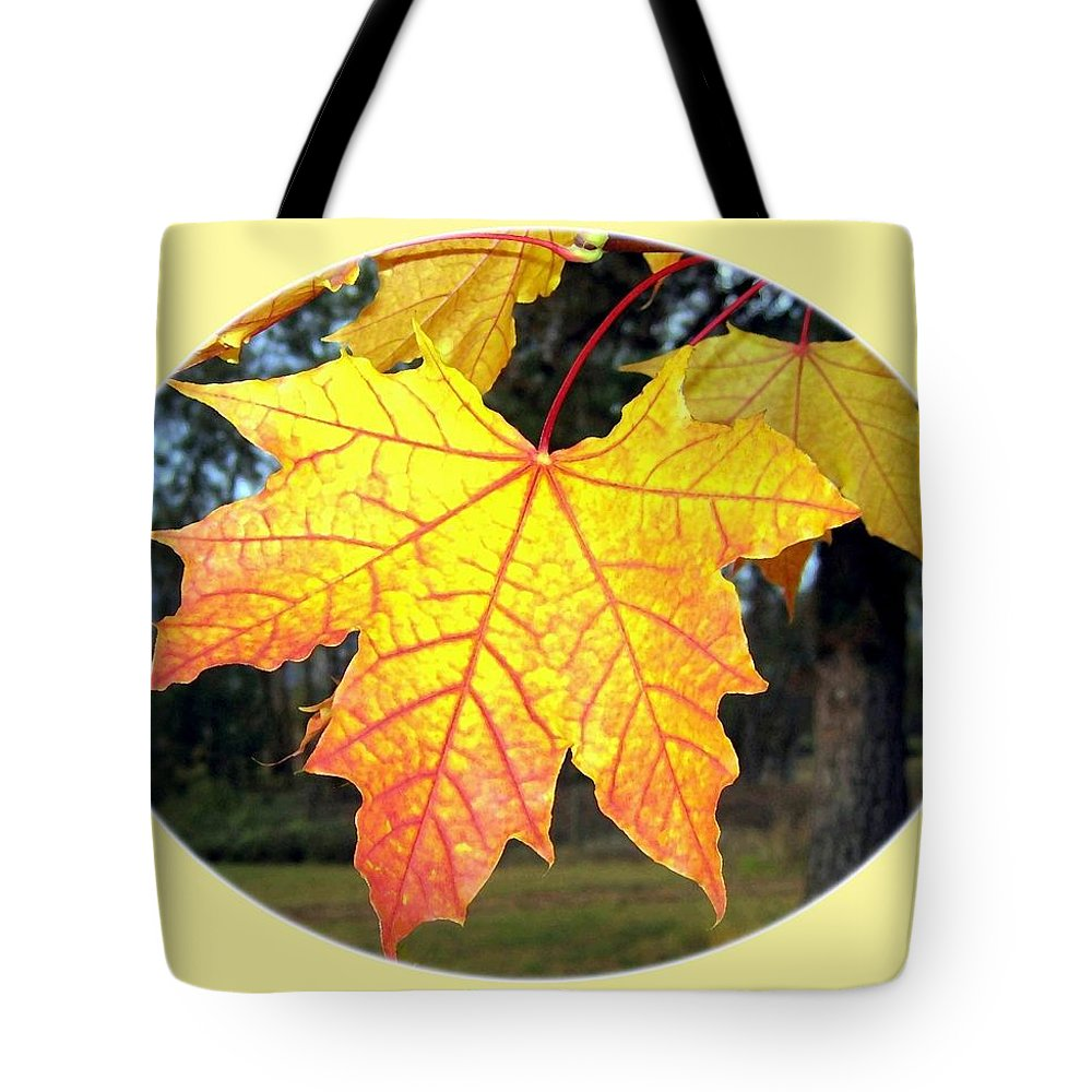 #paintedautumnleaves Tote Bag featuring the digital art Fall Finery 2 by Will Borden