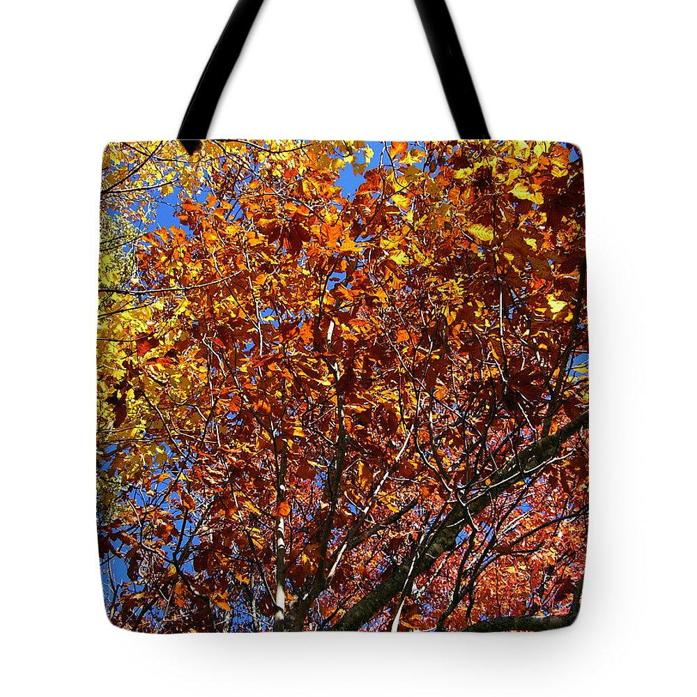 Fall Tote Bag featuring the photograph Fall by Flavia Westerwelle