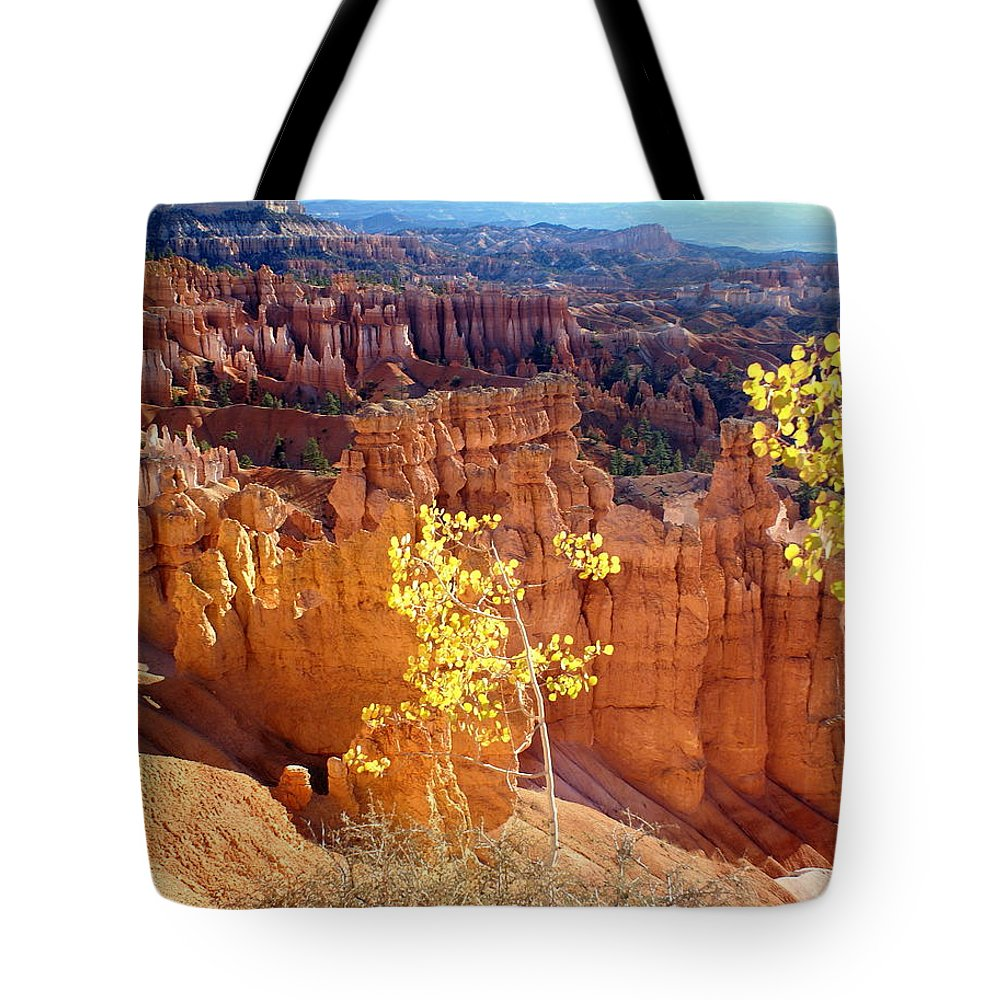 Bryce Canyon National Park Tote Bag featuring the photograph Fall In Bryce Canyon by Marty Koch
