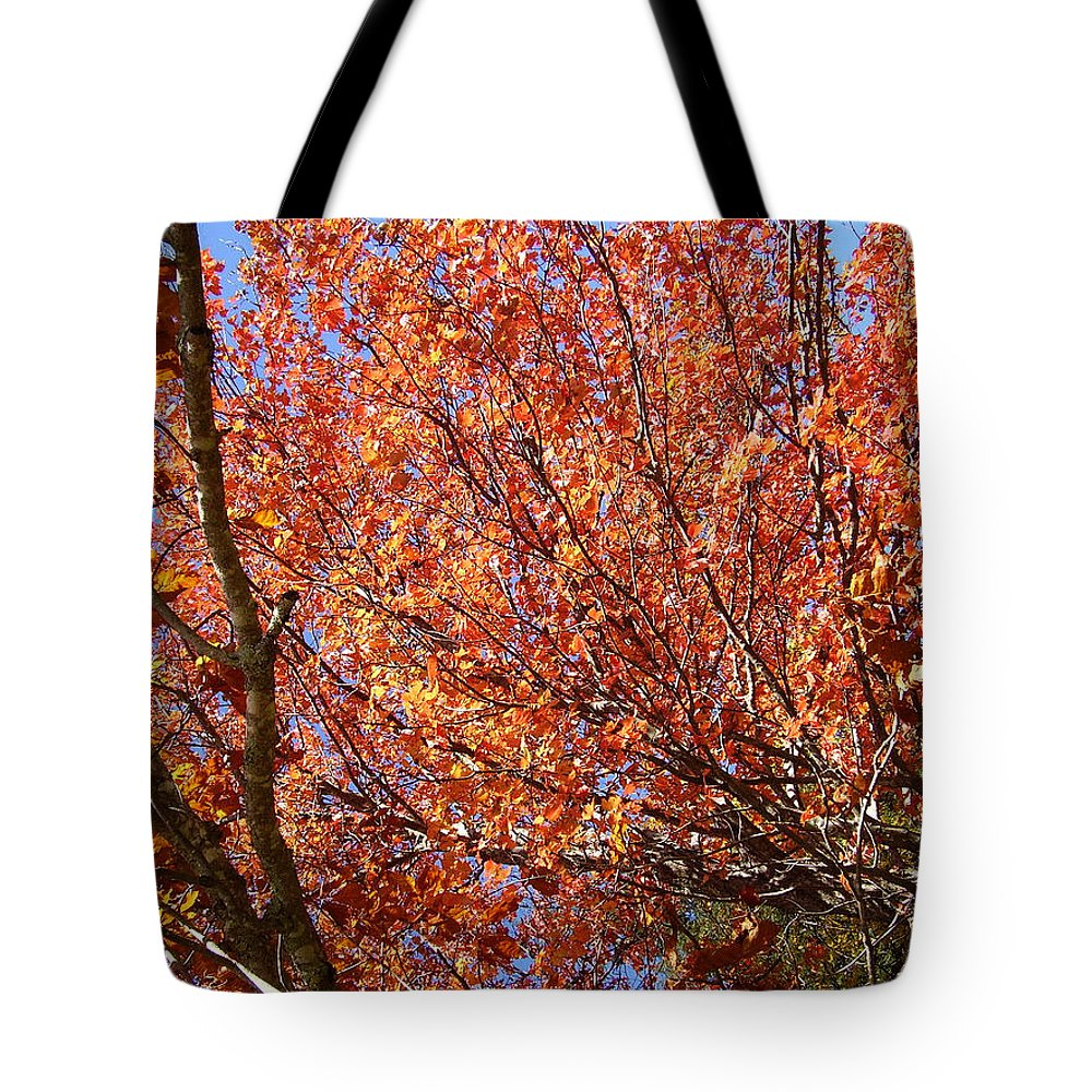 Fall Tote Bag featuring the photograph Fall In The Blue Ridge Mountains by Flavia Westerwelle