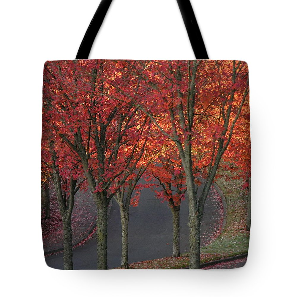 Fall Tote Bag featuring the photograph Fall Leaves Along A Curved Road by Shirley Stevenson Wallis