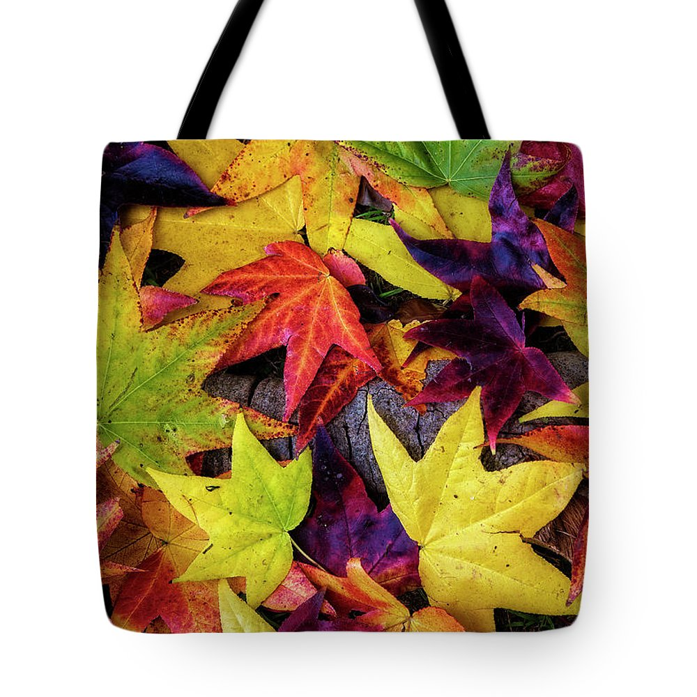 Leaves Tote Bag featuring the photograph Fall Leaves by Richard Cronberg