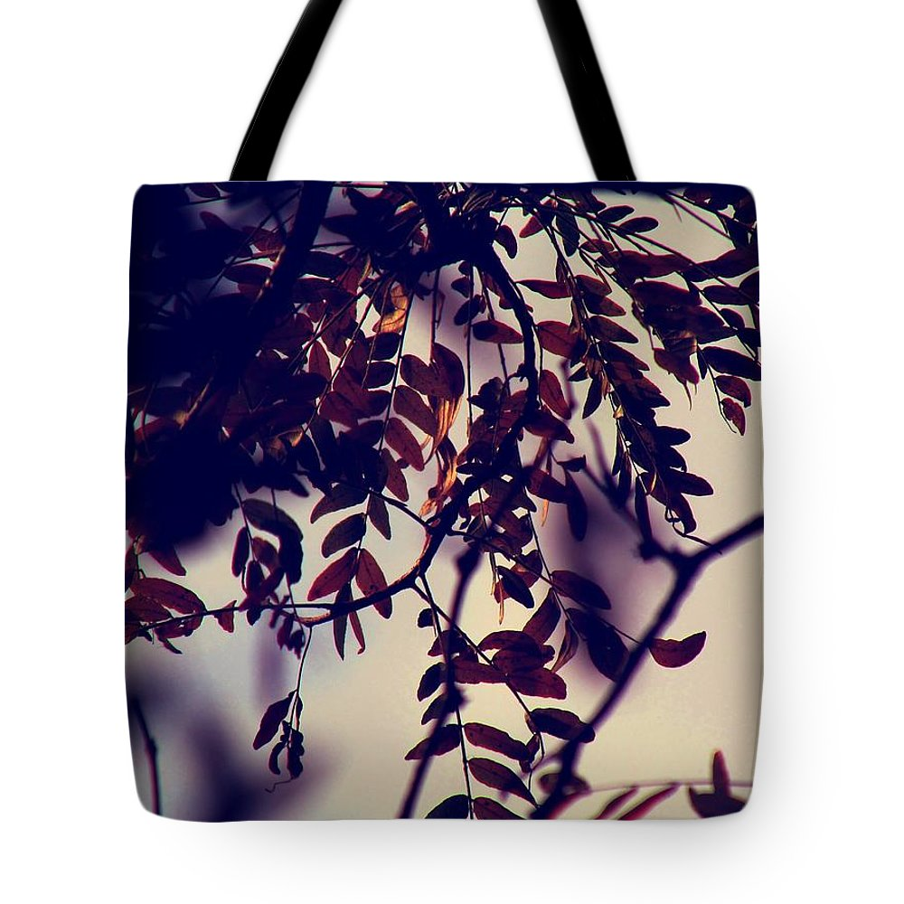 Fall Tote Bag featuring the photograph Fall Of Shades by Devin Dixon