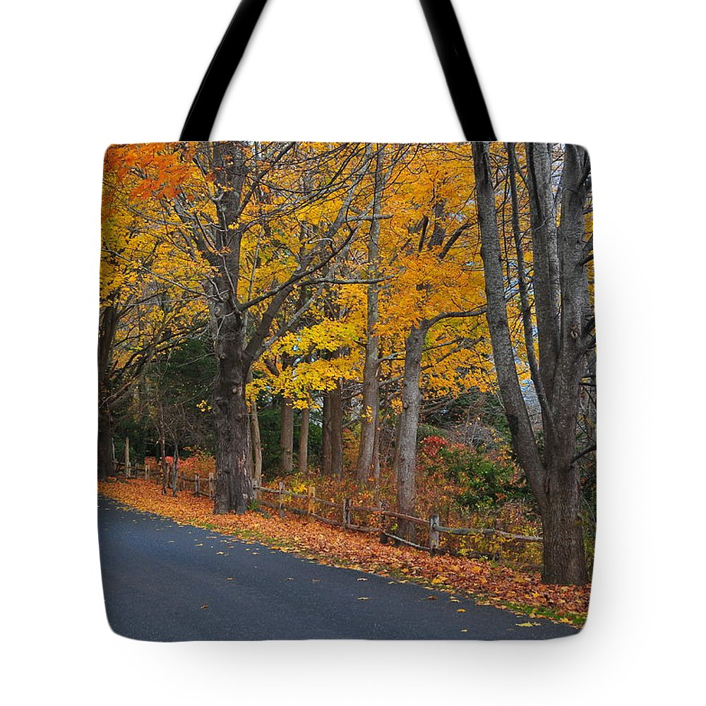 Cape Tote Bag featuring the photograph Fall On The Cape by Catherine Reusch Daley