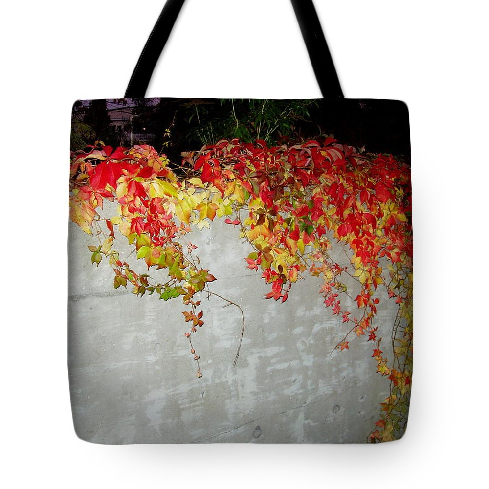 Fall Tote Bag featuring the photograph Fall On The Wall by Deborah Crew-Johnson