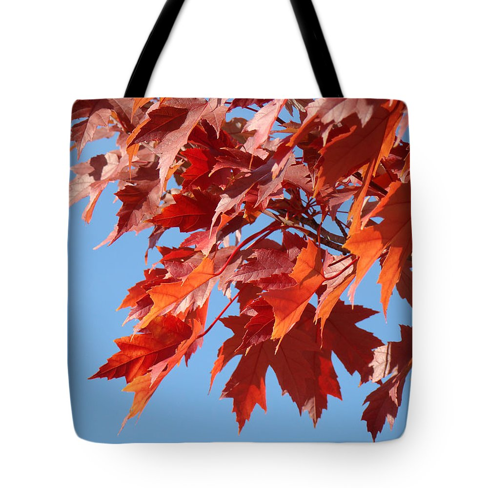 Autumn Tote Bag featuring the photograph Fall Red Orange Leaves Blue Sky Baslee Troutman by Baslee Troutman