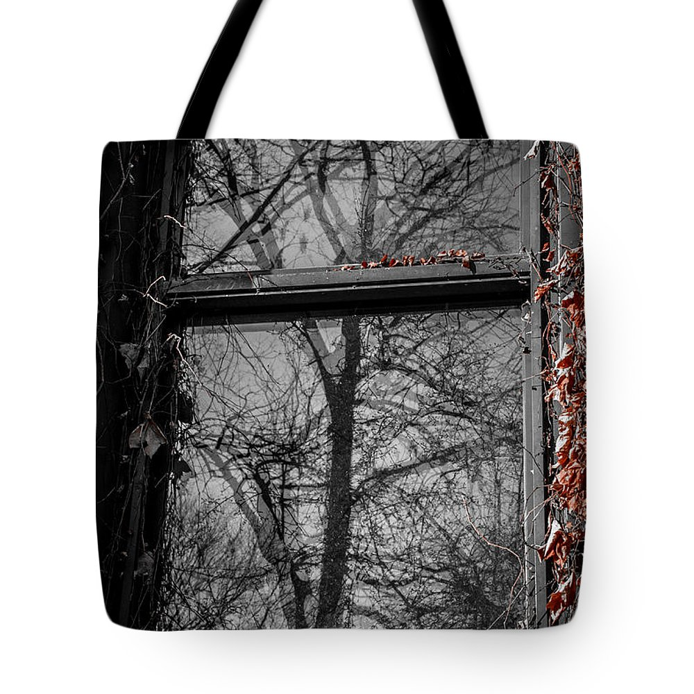 Fall Tote Bag featuring the photograph Fall Reflection by Rita Anthony
