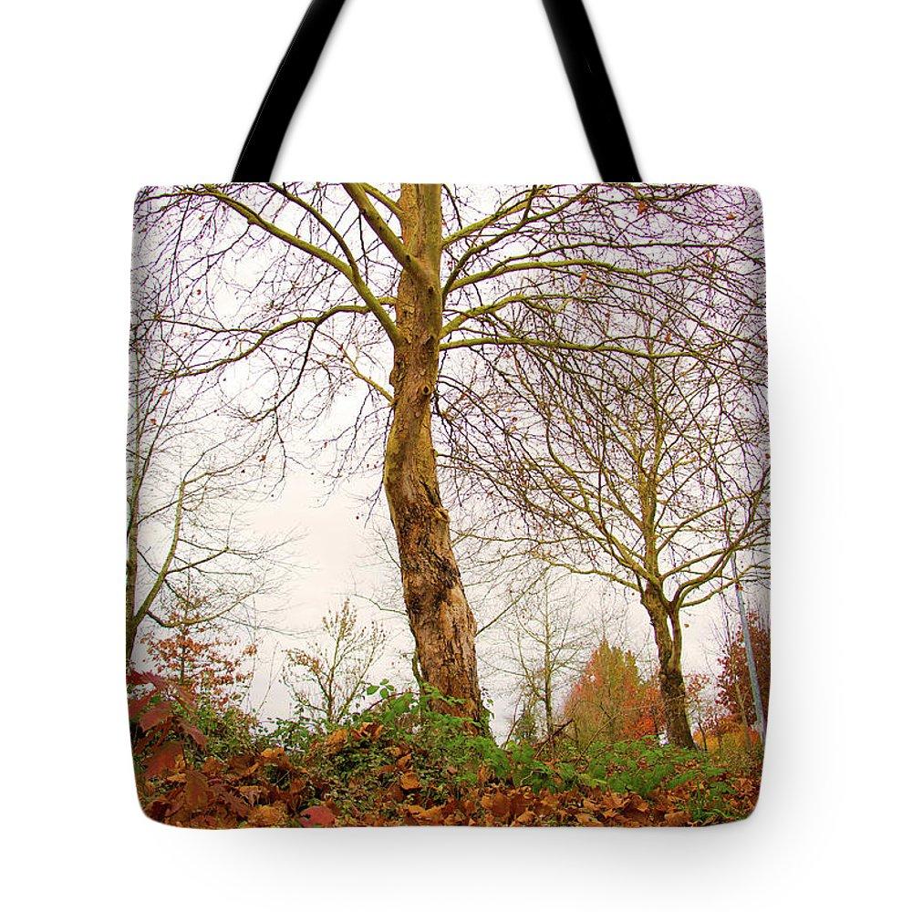 Fall Season Tote Bag featuring the photograph Fall Season At Its Best by Seb Estrada