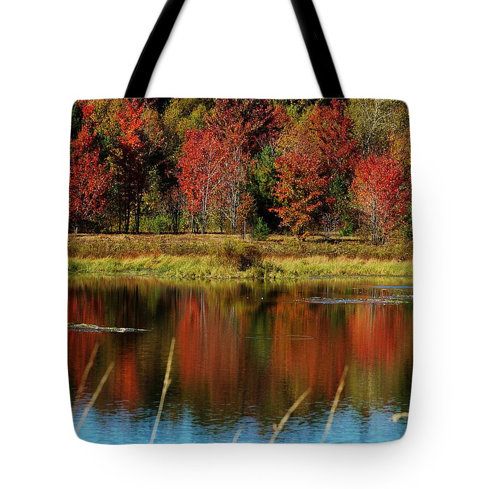 Autumn Tote Bag featuring the photograph Fall Splendor by Linda Murphy