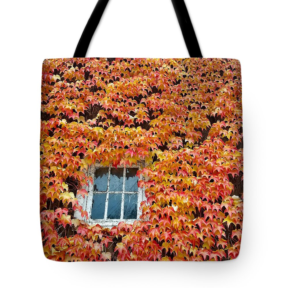Leaves Tote Bag featuring the photograph Fall Window by Lindy Pollard