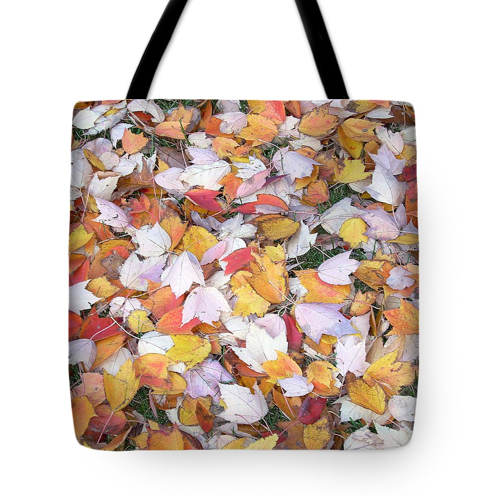 Photography Fall Autum Leaves Tote Bag featuring the photograph Fallen Fantasy by Karin Dawn Kelshall- Best
