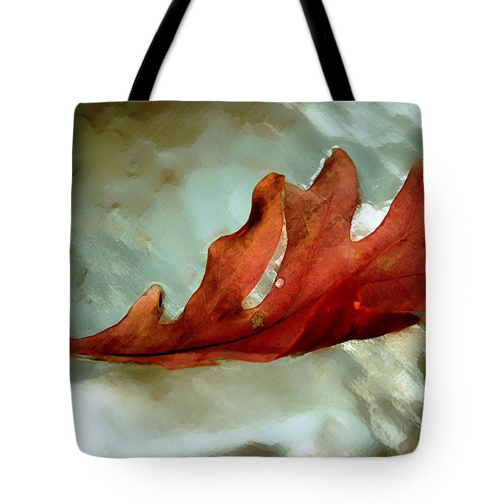 Nature Tote Bag featuring the photograph Fallen Leaf by Linda Sannuti