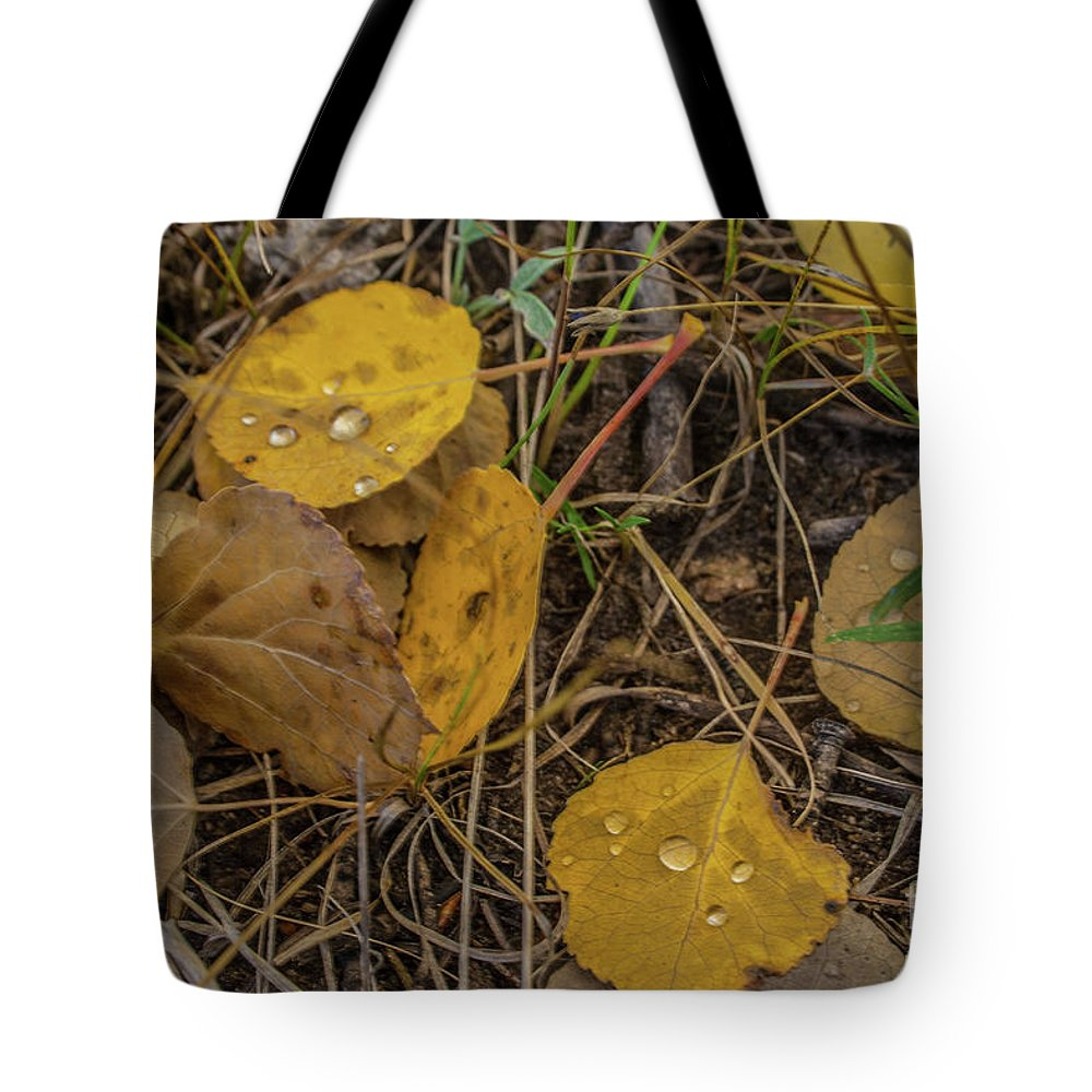 Leaves Tote Bag featuring the photograph Fallen Leaves by Tony Baca