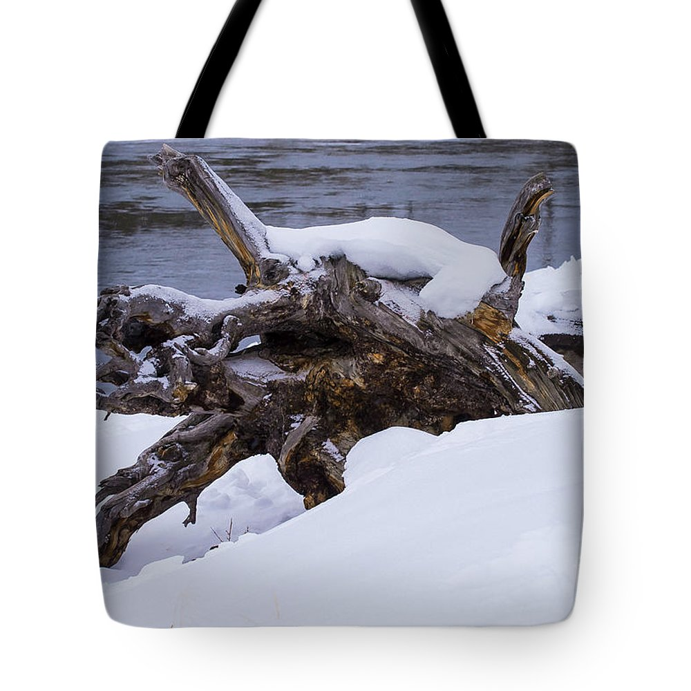 Yellowstone National Park Tote Bag featuring the photograph Fallen Tree by Bob Phillips