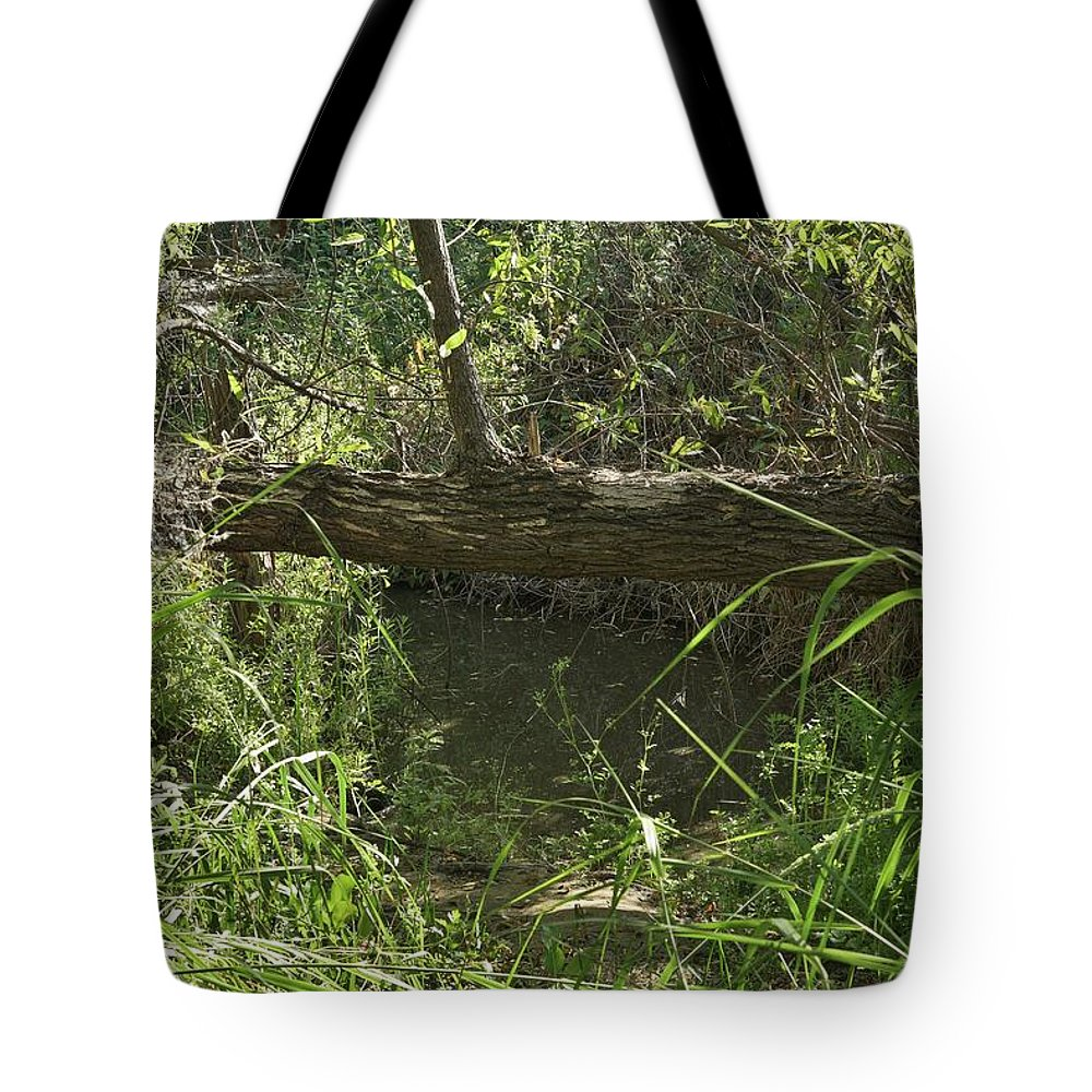 Linda Brody Tote Bag featuring the photograph Fallen Tree In Peters Canyon by Linda Brody