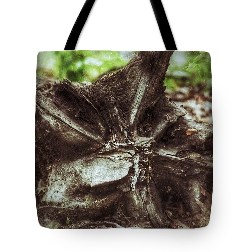 Tree Tote Bag featuring the photograph Fallen Tree by Shelley Smith