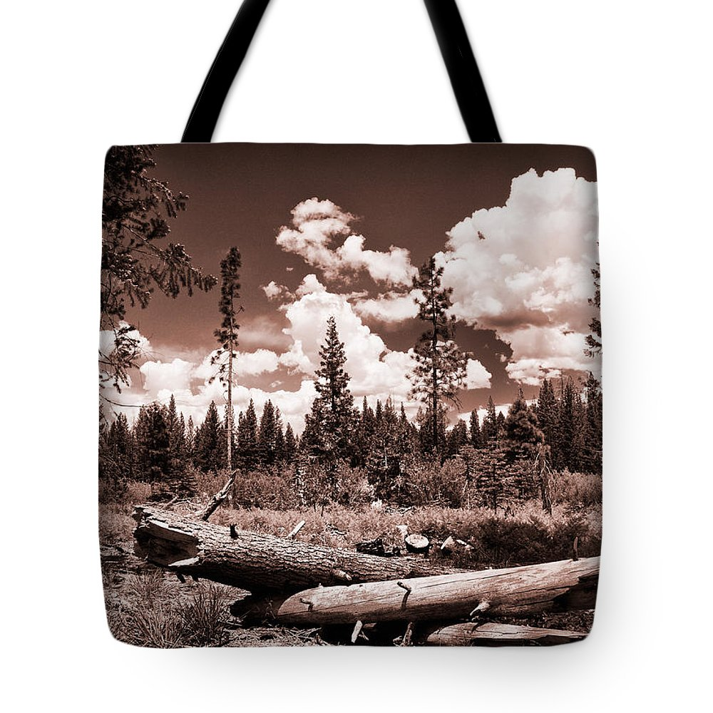 Tree Tote Bag featuring the photograph Fallen Trees by Mick Burkey