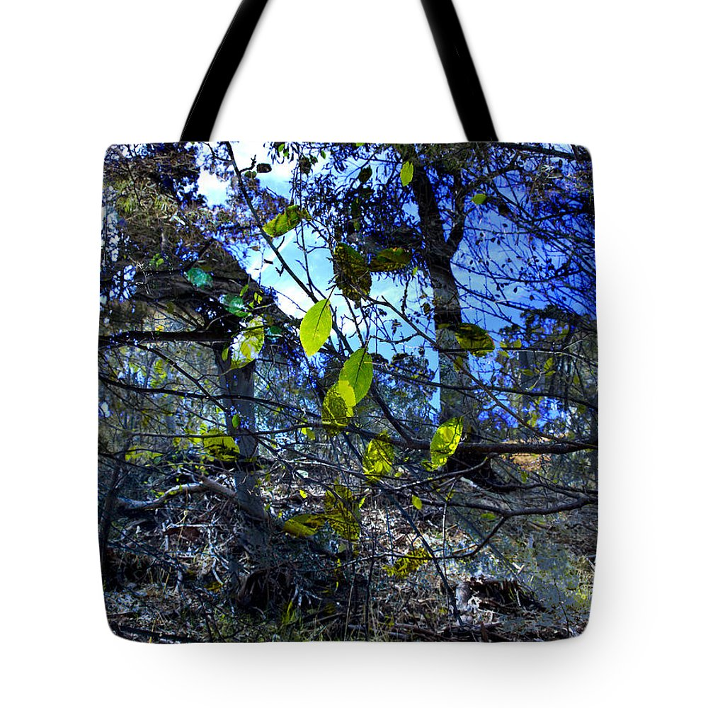 Leaves Tote Bag featuring the photograph Falling Leaves by Kelly Jade King