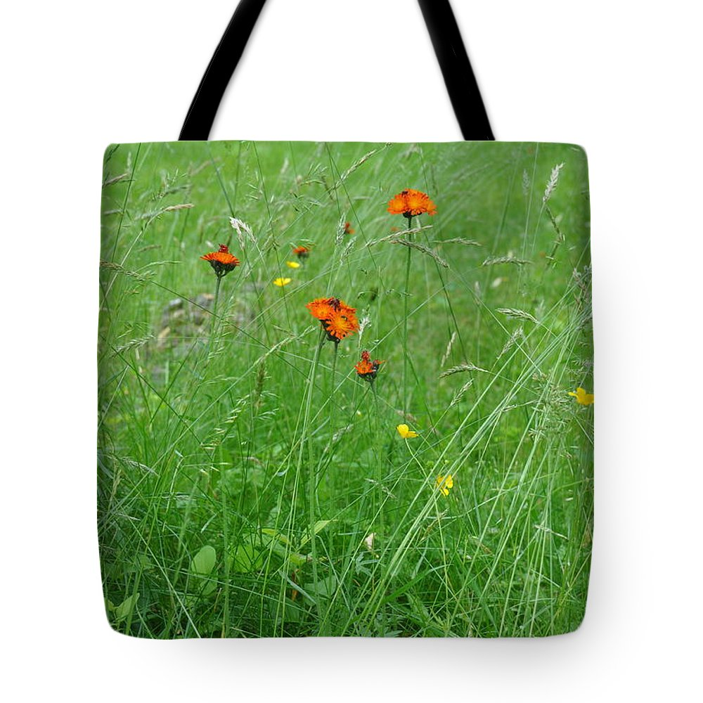 Flower Tote Bag featuring the photograph Fallow Field by Rich Bodane