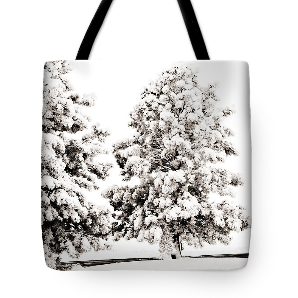 Trees Tote Bag featuring the photograph Family Of Trees by Marilyn Hunt