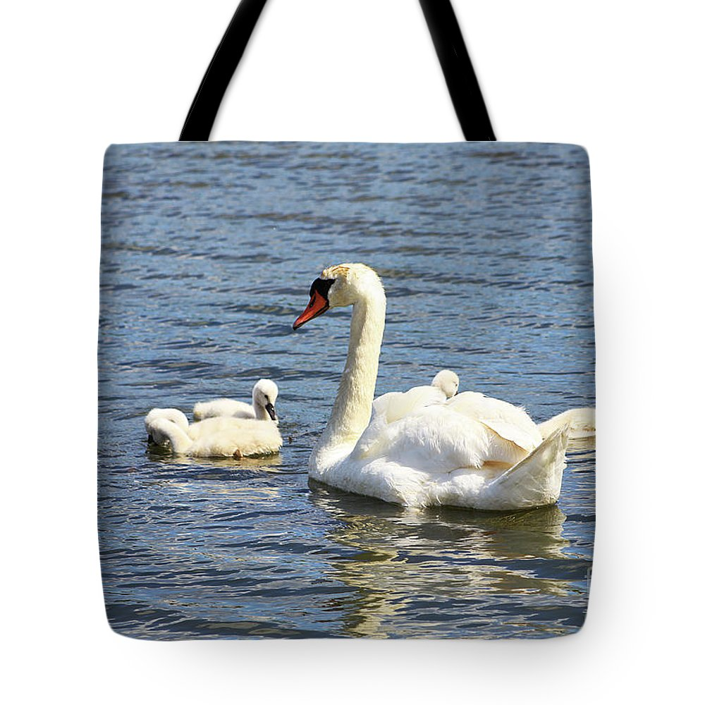 Swan Tote Bag featuring the photograph Family Time by Alyce Taylor