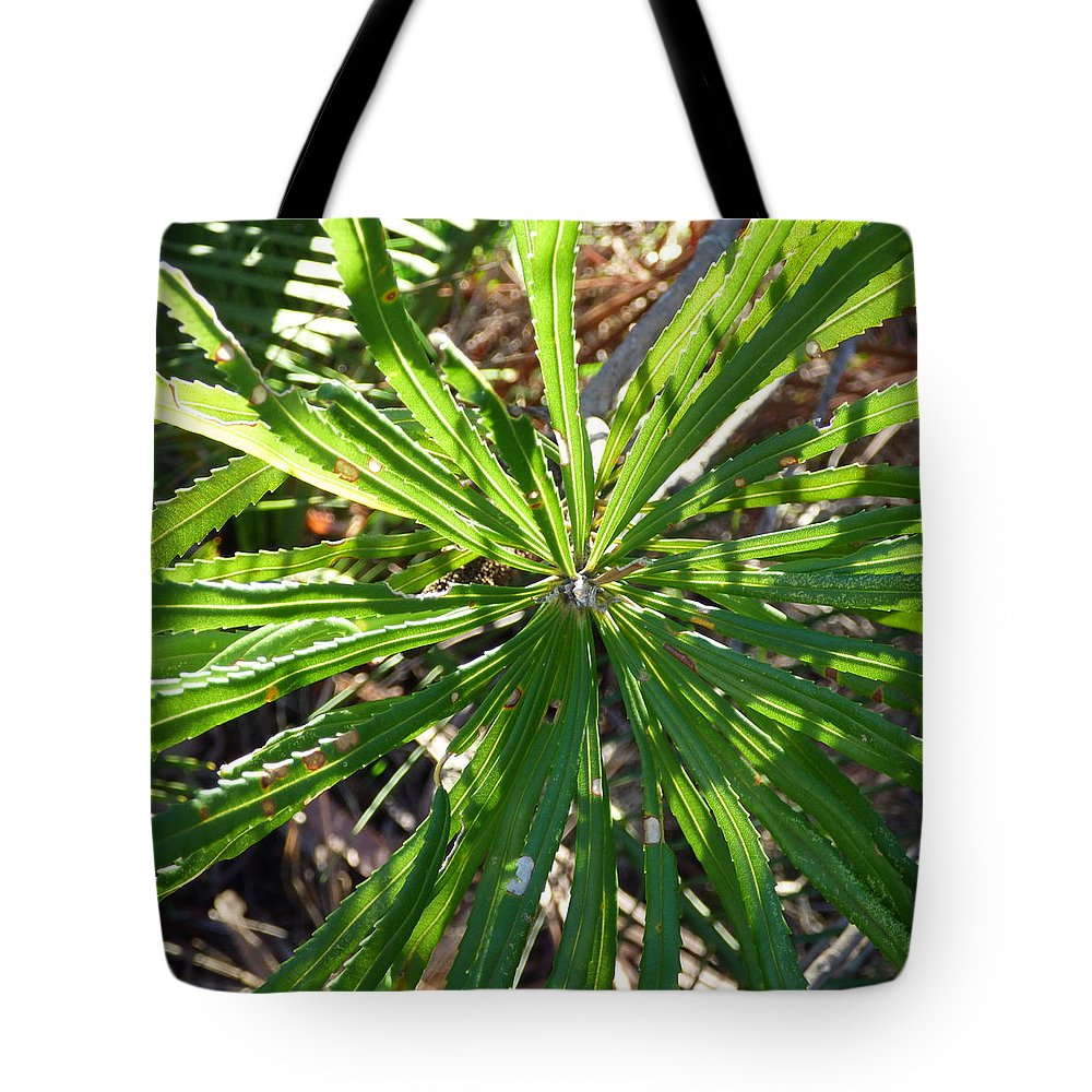 Proteaceae Tote Bag featuring the photograph Fan Of Leaves by Michaela Perryman