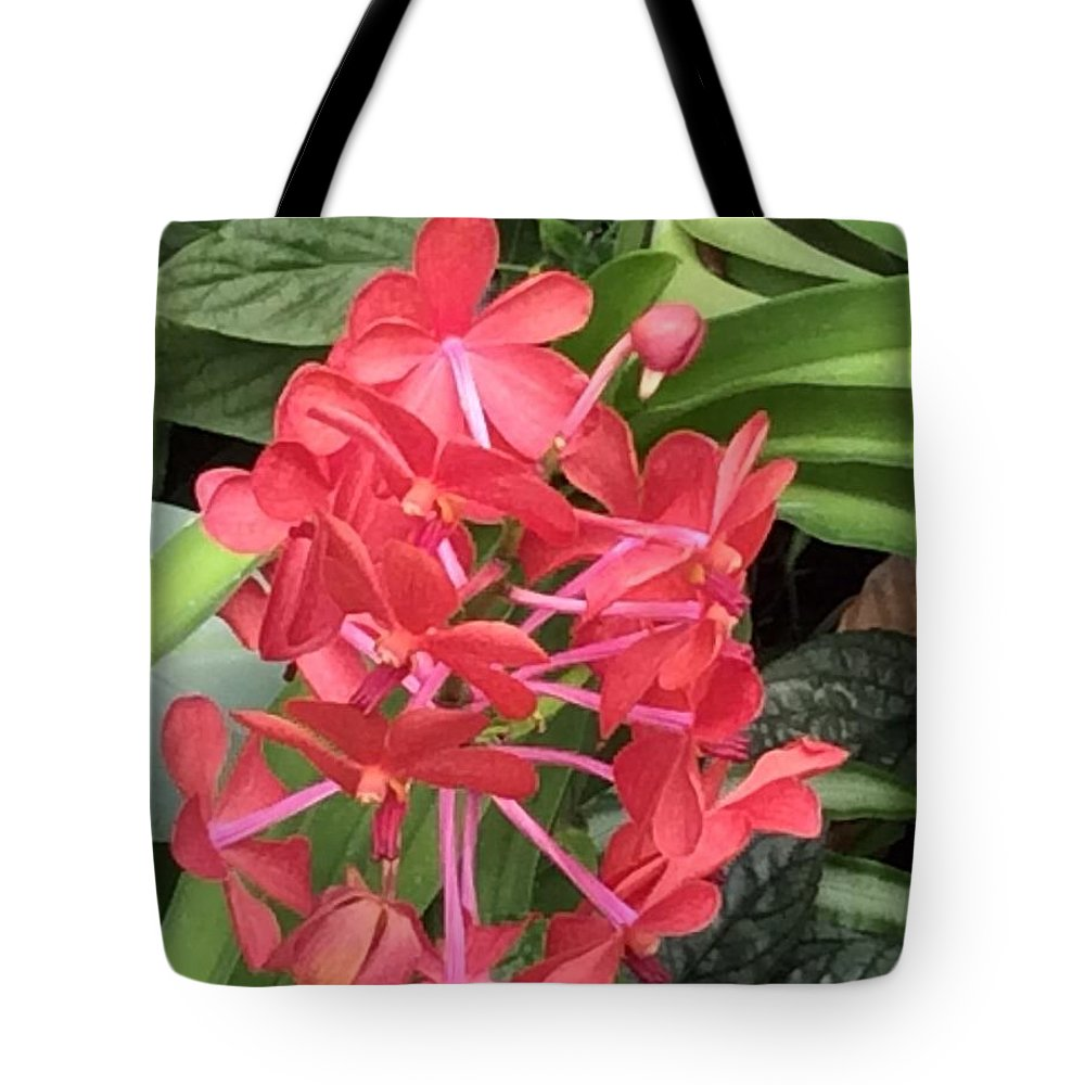 Hawaii Tote Bag featuring the photograph Fantasia by Sharon Allen