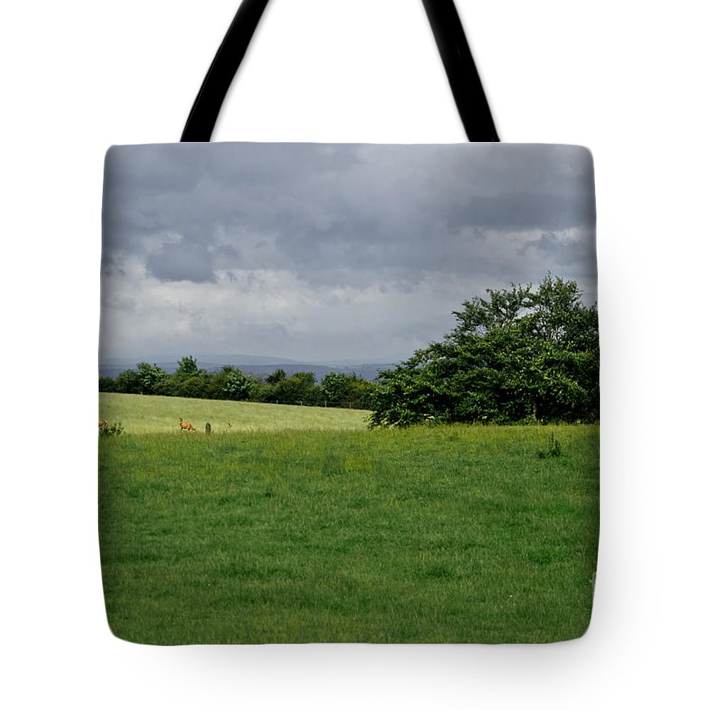 Beecraigs Tote Bag featuring the photograph Faraway Rain. by Elena Perelman