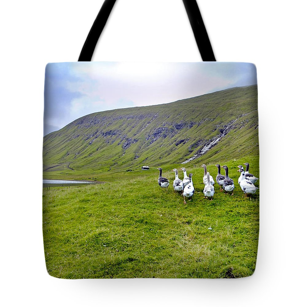 Faroes Tote Bag featuring the photograph Faroes Geese by Robert Lacy