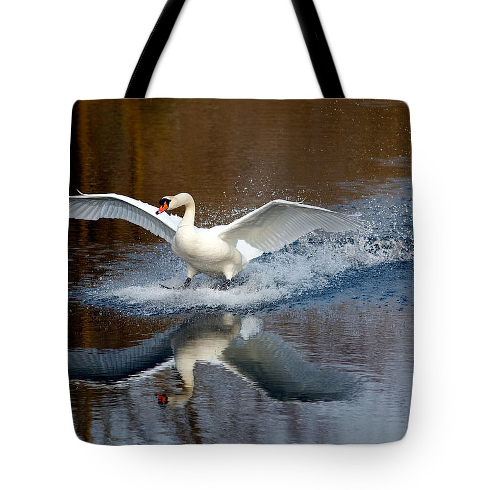 Swan Tote Bag featuring the photograph Fasten Your Seatbelts by Roeselien Raimond