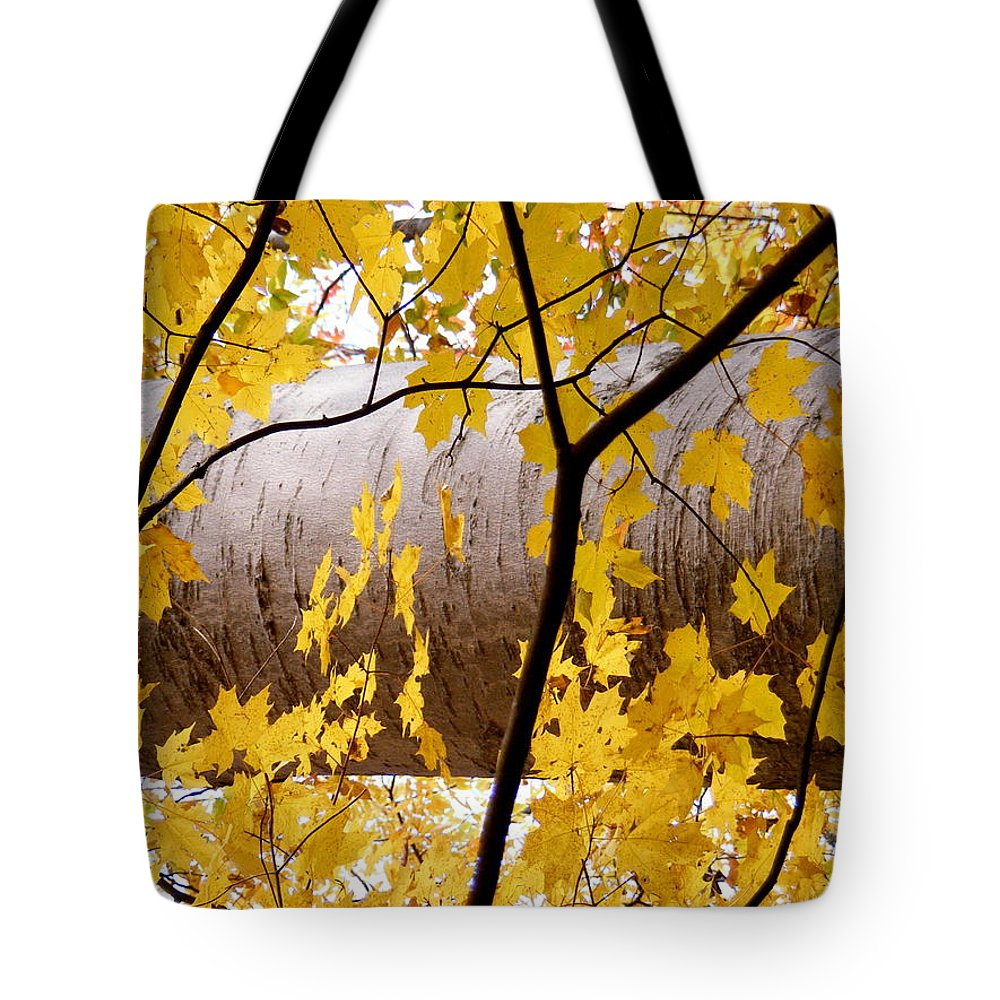 Father Nature Tote Bag featuring the photograph Father Nature by Ed Smith