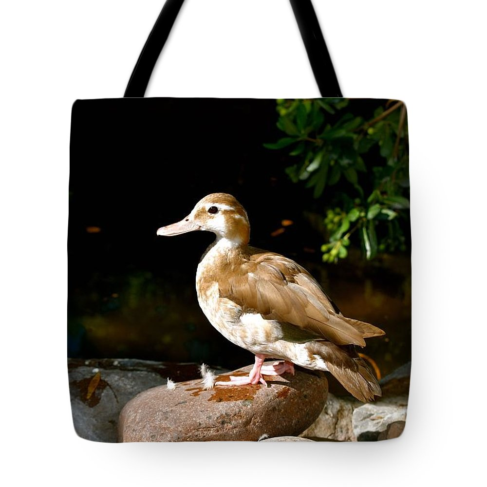 Duck Tote Bag featuring the photograph Feathers by Melisa Elliott