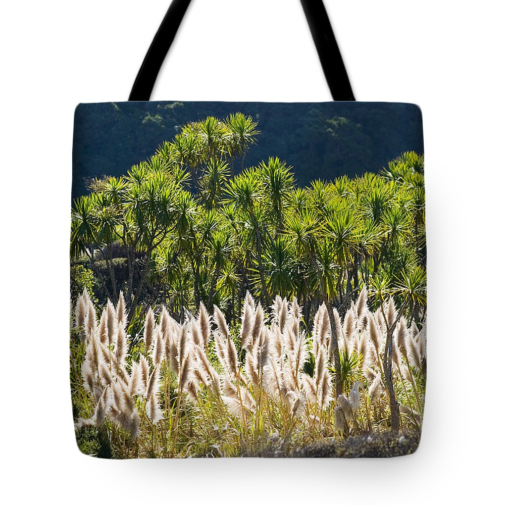 Afternoon Tote Bag featuring the photograph Feathery White Plants by Tomas del Amo - Printscapes