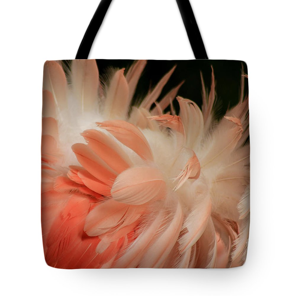 Flamingo Tote Bag featuring the photograph Featherz by Toma Caul