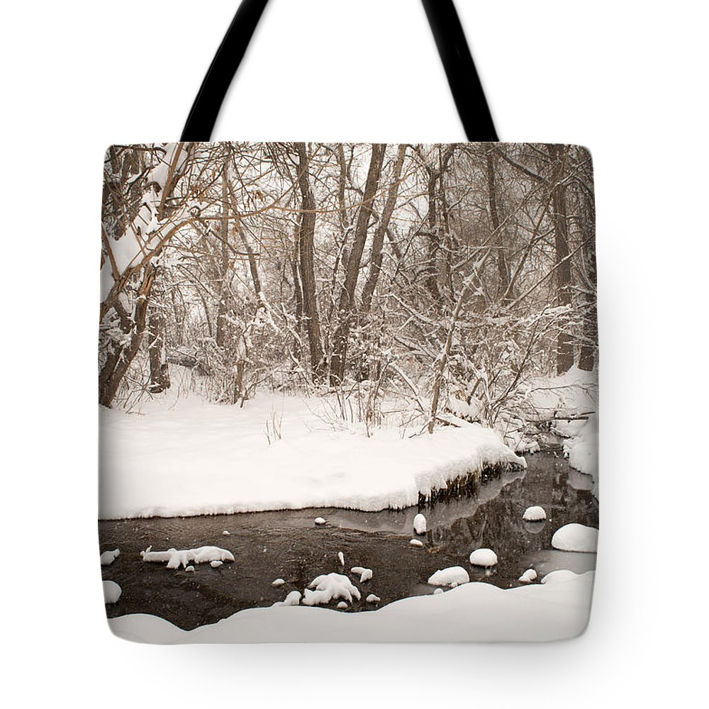 February Tote Bag featuring the photograph February Snow by Kimberly Noxon