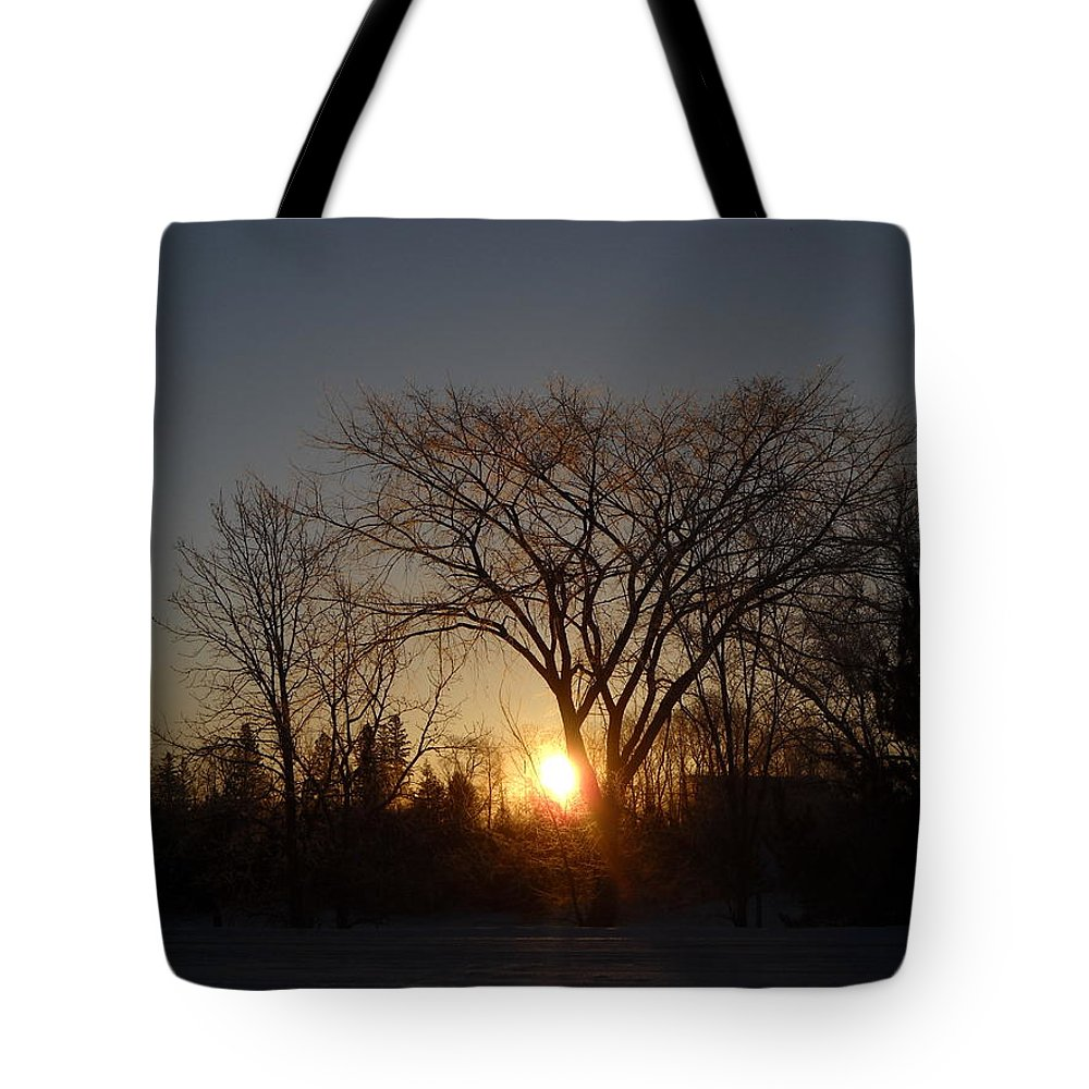 Sunrise Tote Bag featuring the photograph February Sunrise Behind Elm Tree by Kent Lorentzen