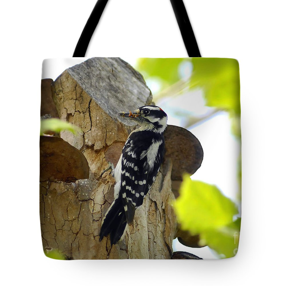 Downy Woodpecker Tote Bag featuring the photograph Feeding Time by David Lee Thompson