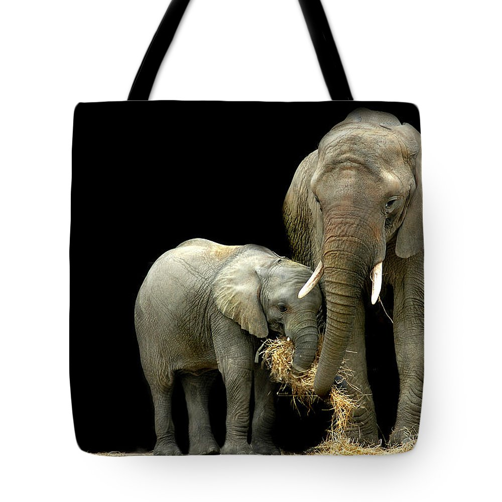 Elephant Tote Bag featuring the photograph Feeding Time by Stephie Butler