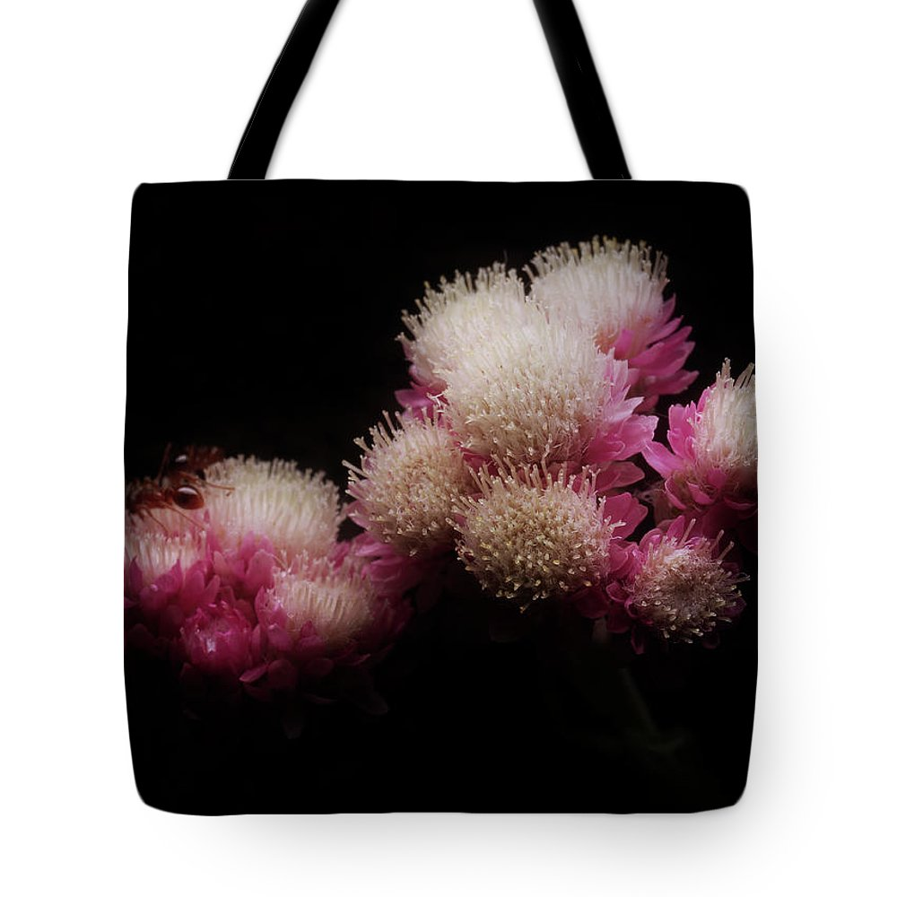 Beautiful Tote Bag featuring the photograph Feeling #940 by Alexander Svetlov