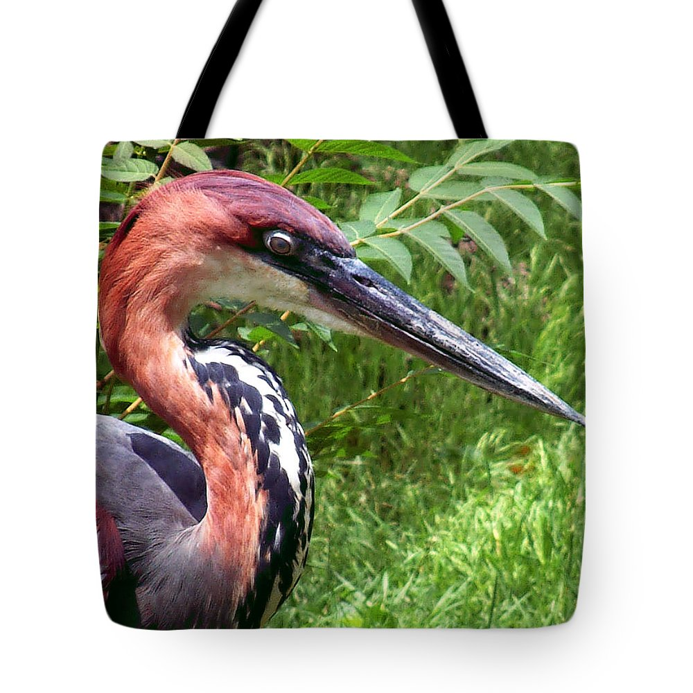 Bird Tote Bag featuring the photograph Feeling A Bit Peckish by RC deWinter