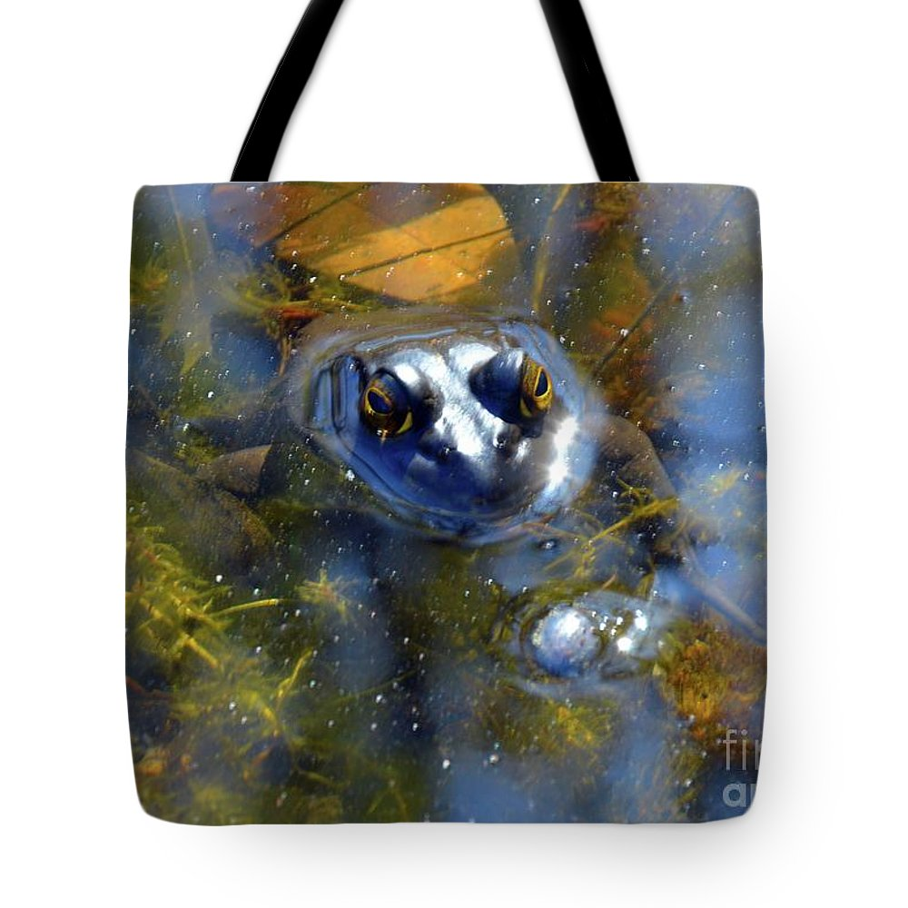 Frog Tote Bag featuring the photograph Feeling Froggy by Robyn King