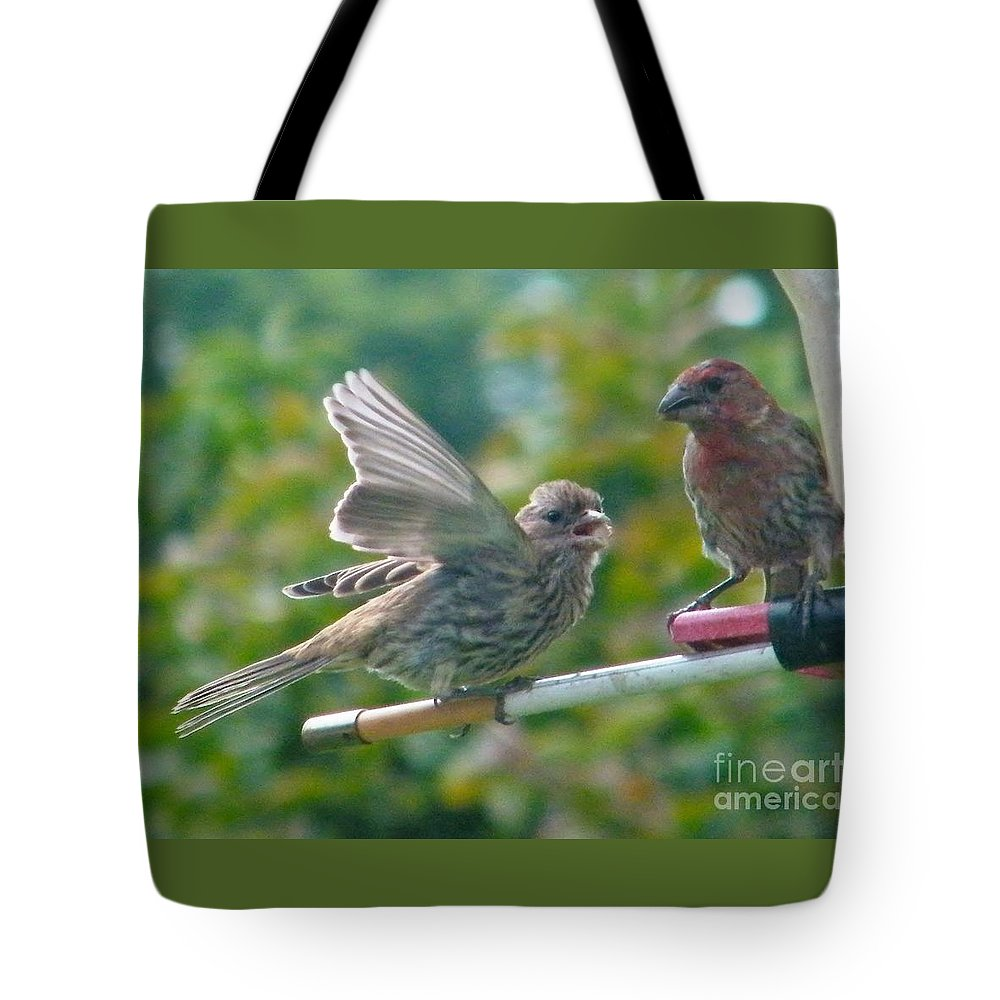 Birds Tote Bag featuring the photograph Female And Male Crossbills  August Indiana by Rory Cubel