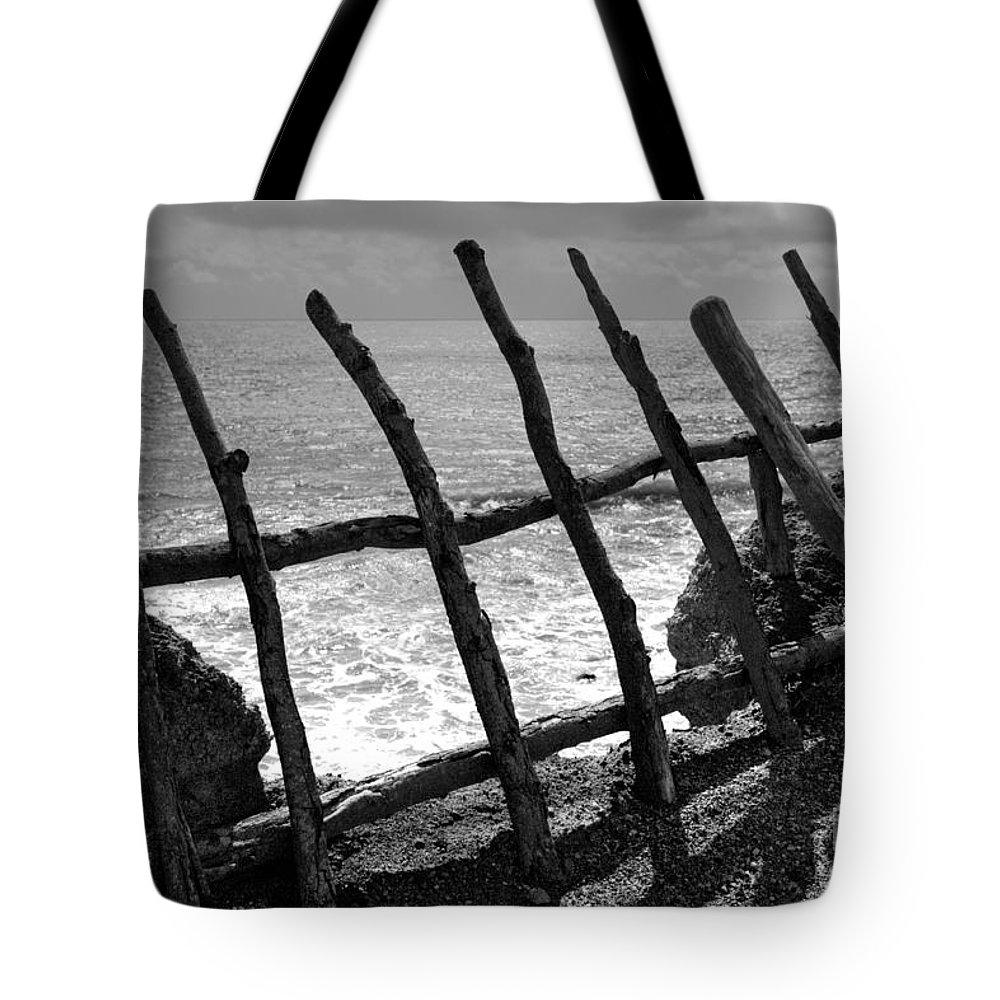 Atlantic Ocean Tote Bag featuring the photograph Fence by Gaspar Avila