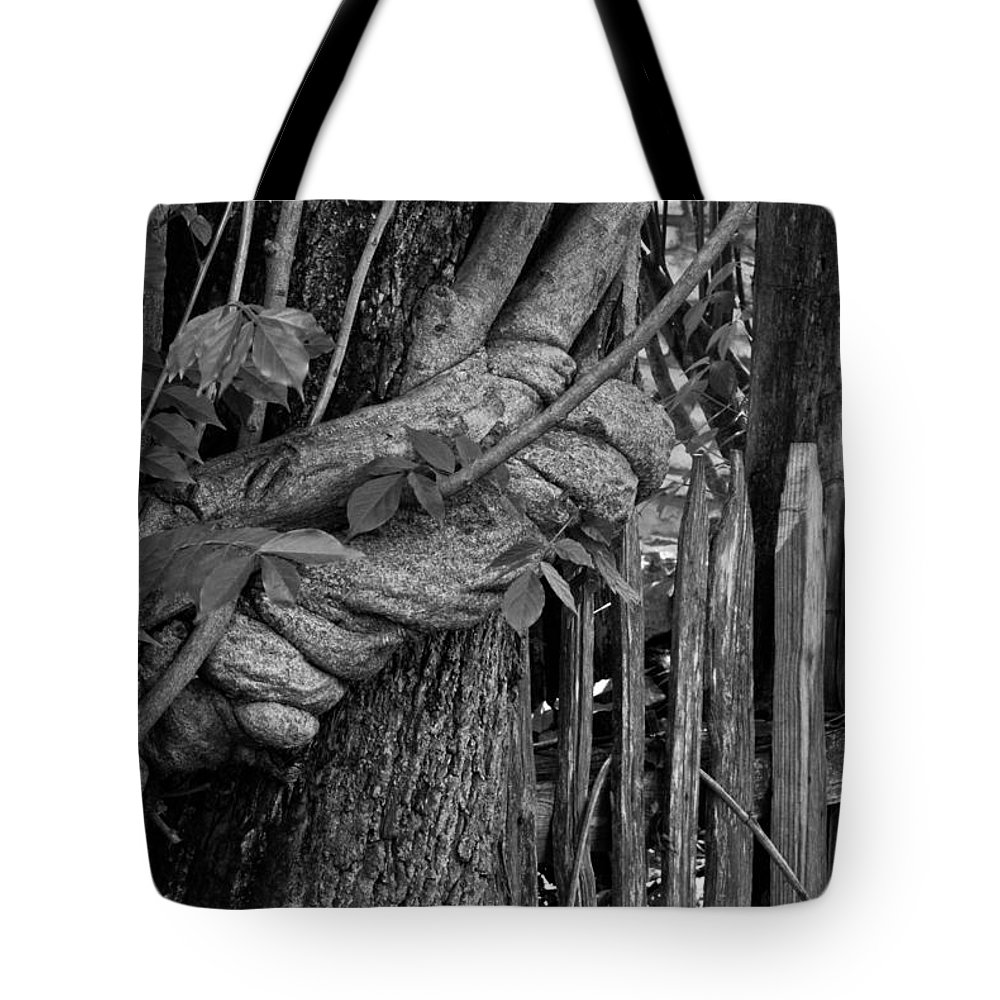 Fence Tote Bag featuring the photograph Fence In The Tropics by Douglas Barnett